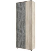 Шкаф двухстворчатый (комбинированный) Визит 1
